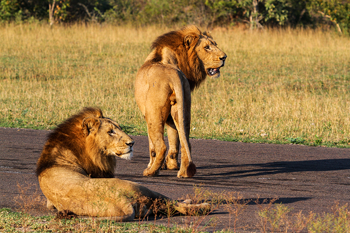 They briefly took over the airstrip that morning, but on the alert for whoever might not want them around!