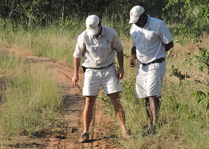 Werner and Euce - tracking a leopard. Photograph by  Eric Leininger