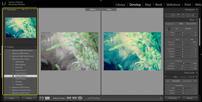 Lightroom presets copy