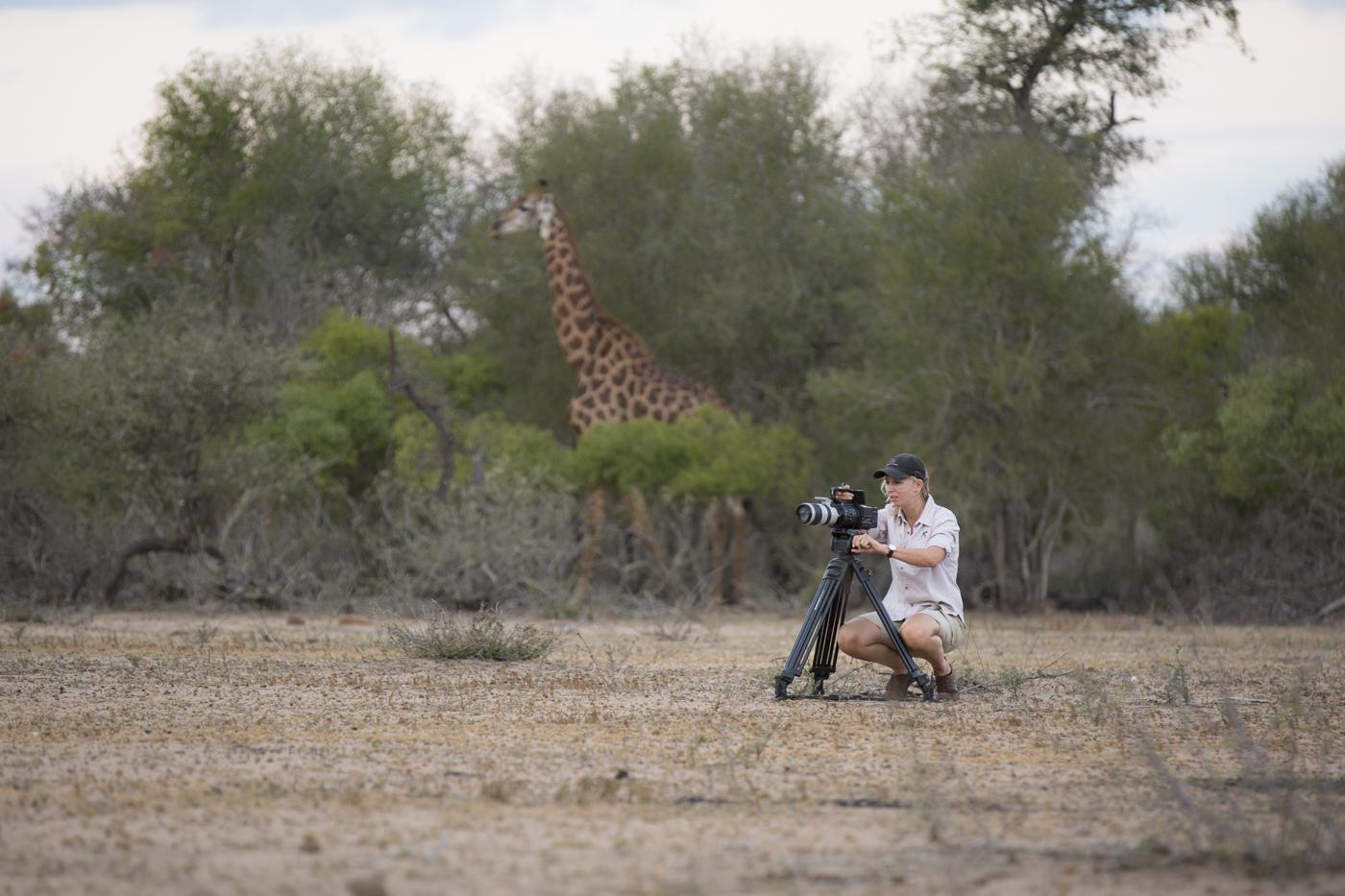 Amy Giraffe