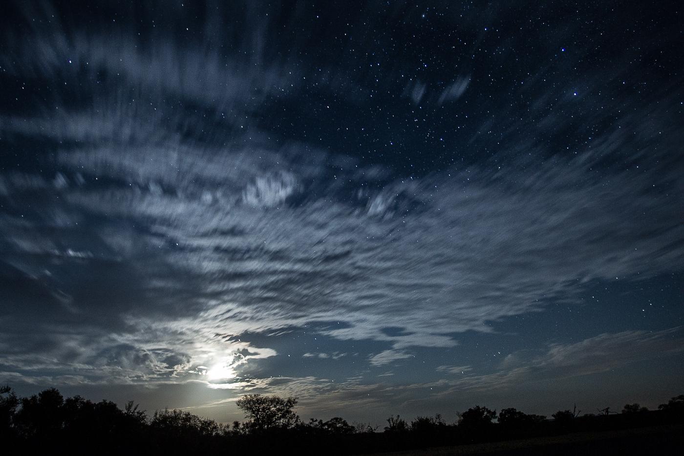 the night sky 223