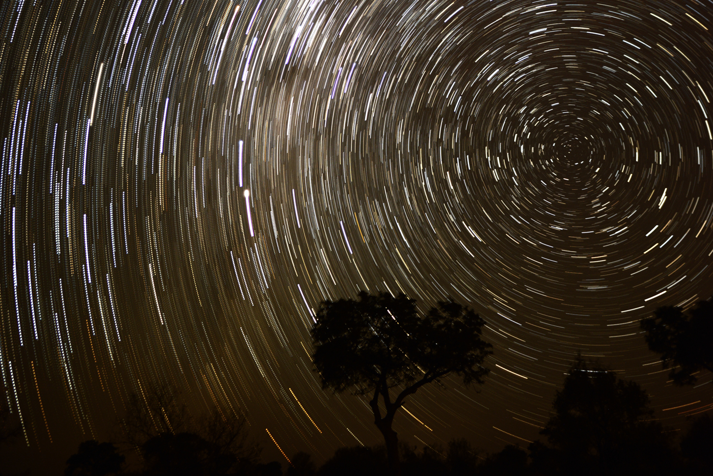 star trail, 2016, SC