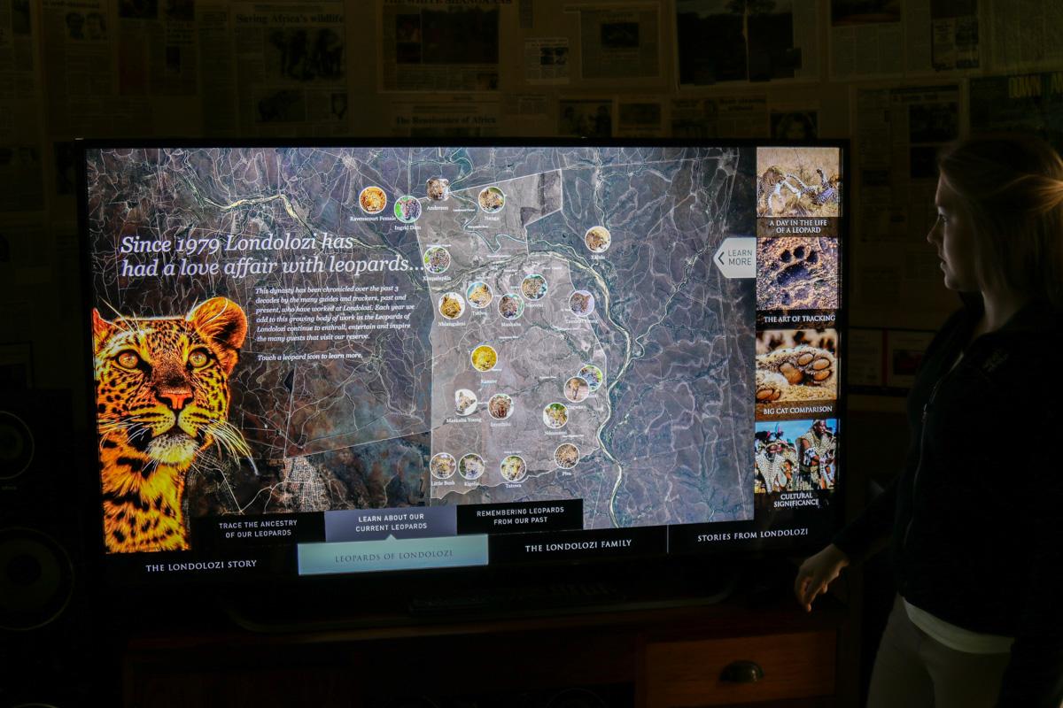 Leopard Profile Screen