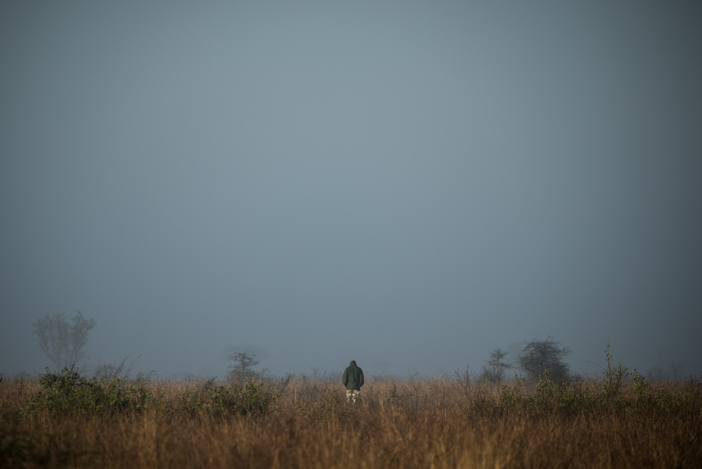 rob h, tracker, mist, SC