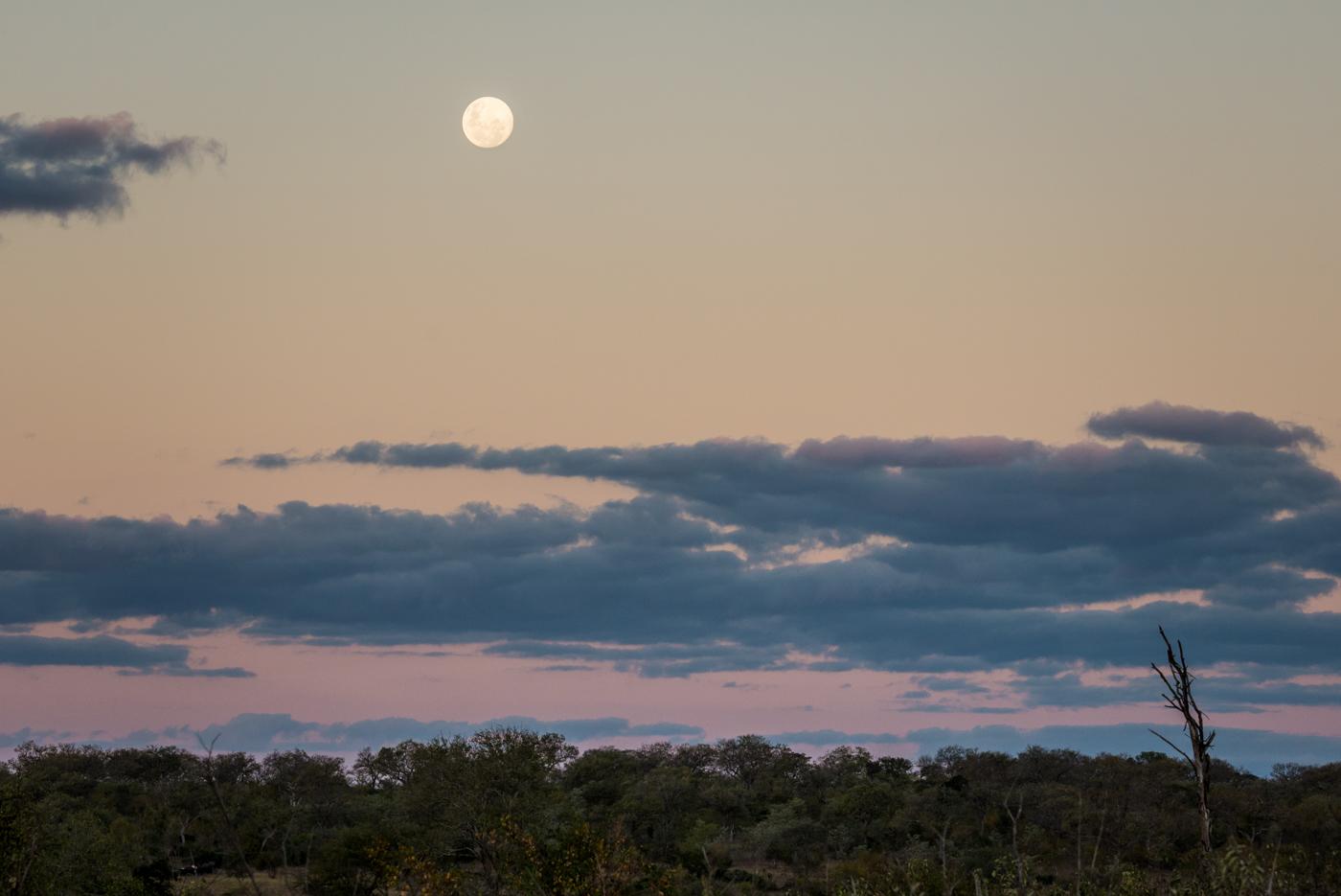 full moon, SC