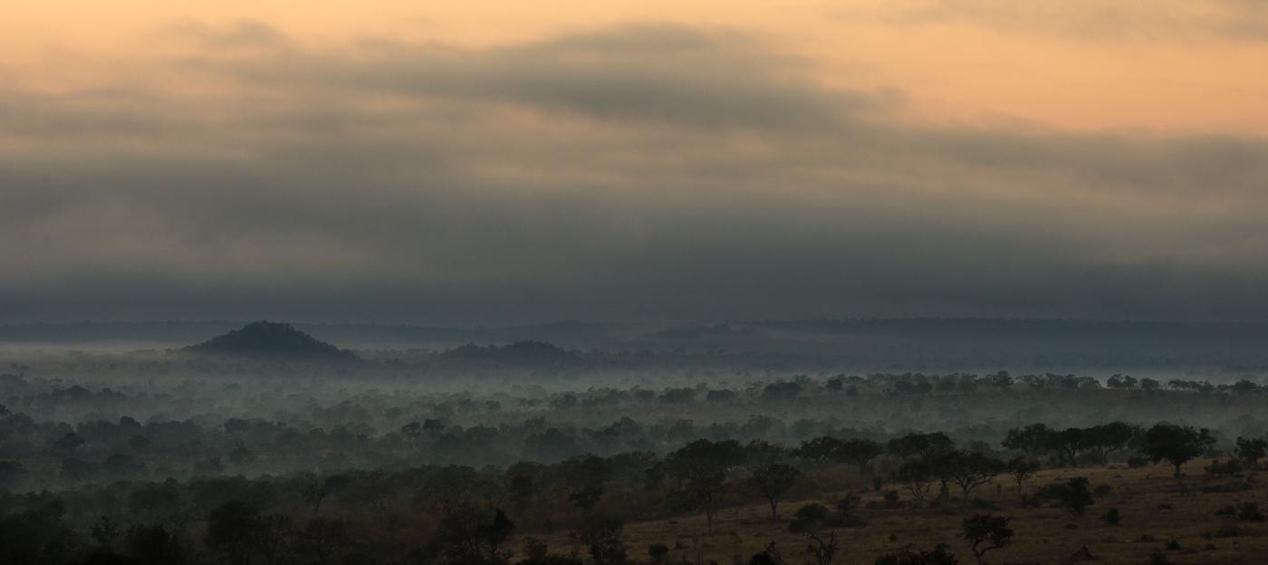 distant landscape, SC