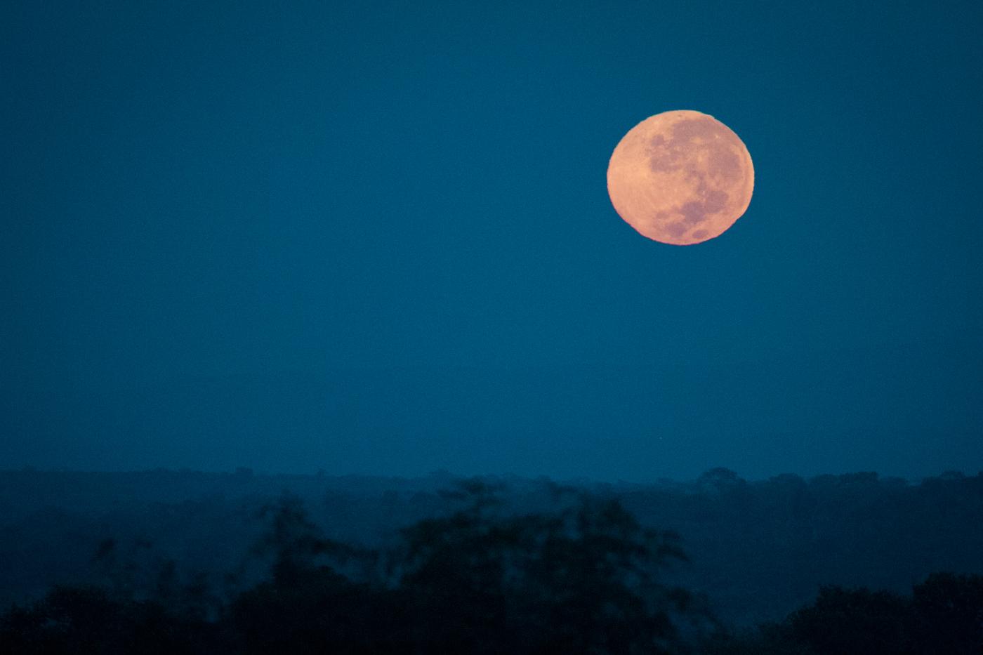 Andrea-Campbell-Moon-Set