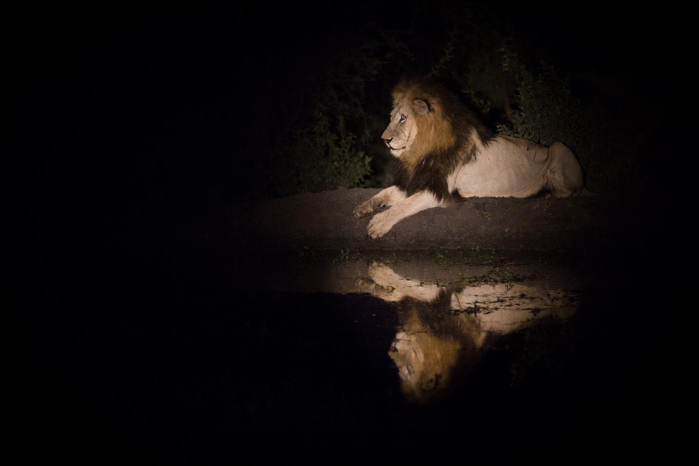 Matimba reflection