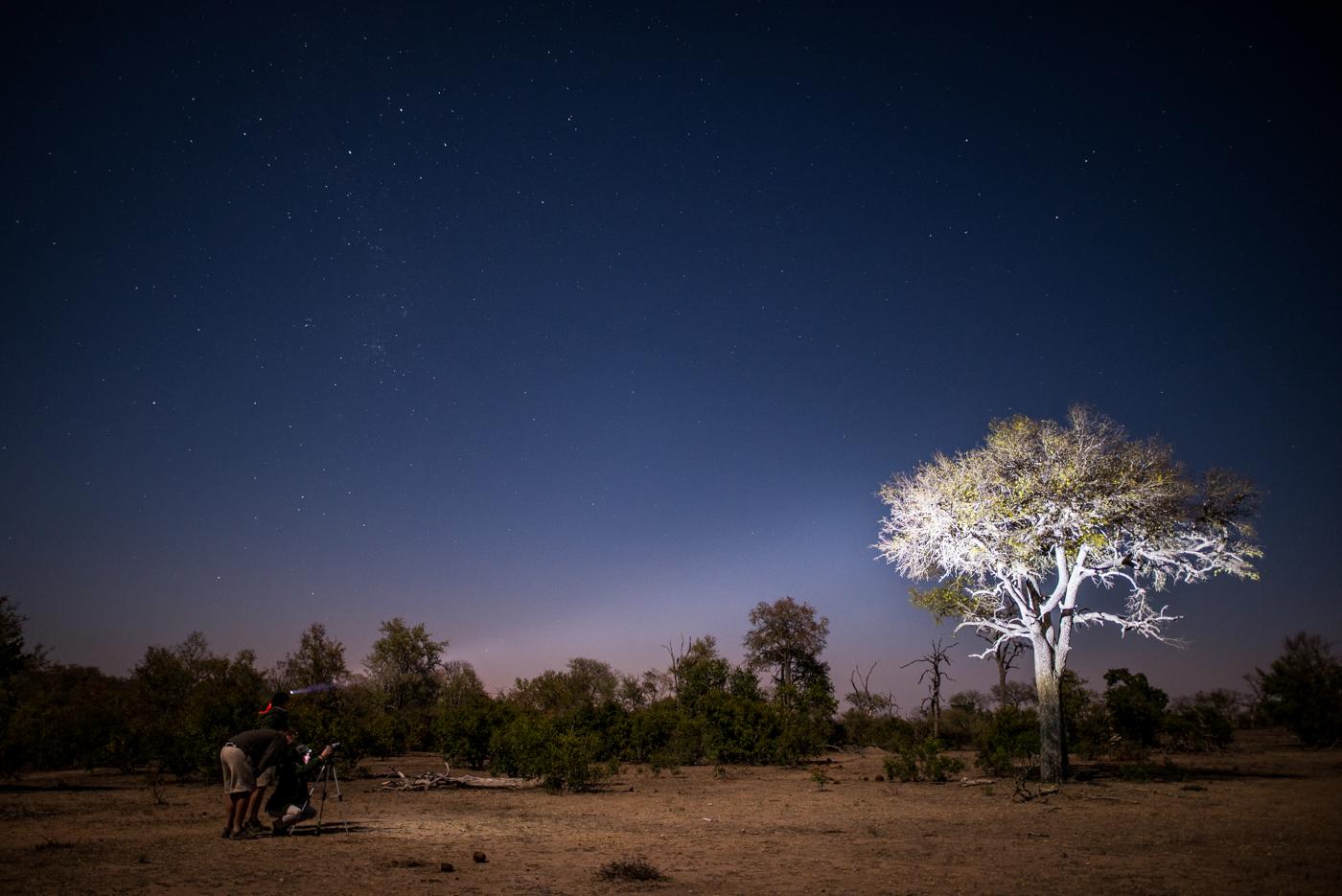 moonlight, SC