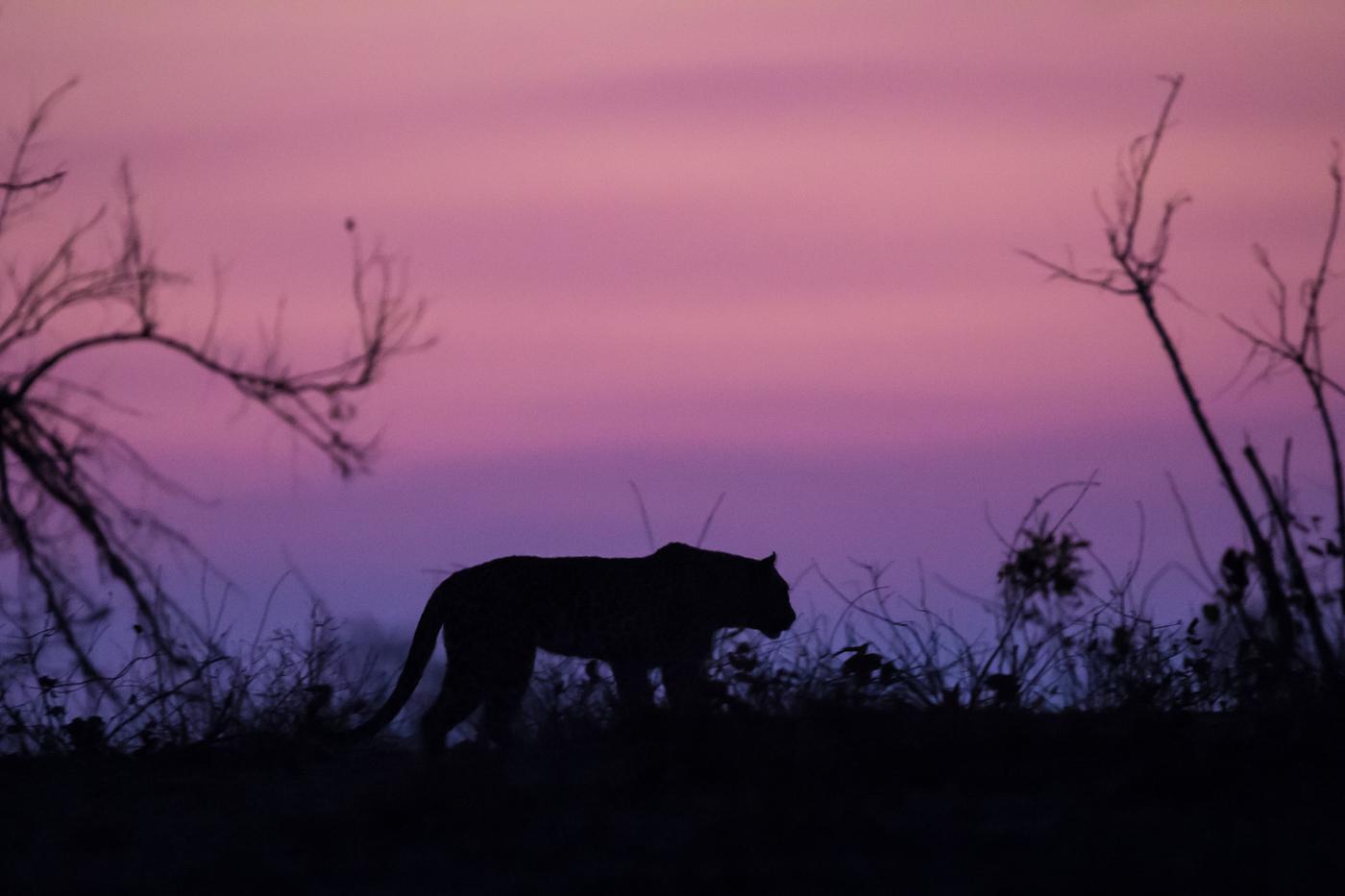 nkoveni-sunset