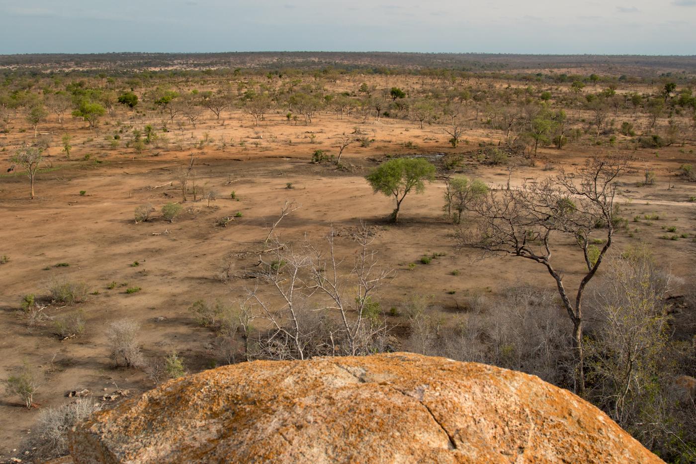 Ximpalapala Koppie, drought