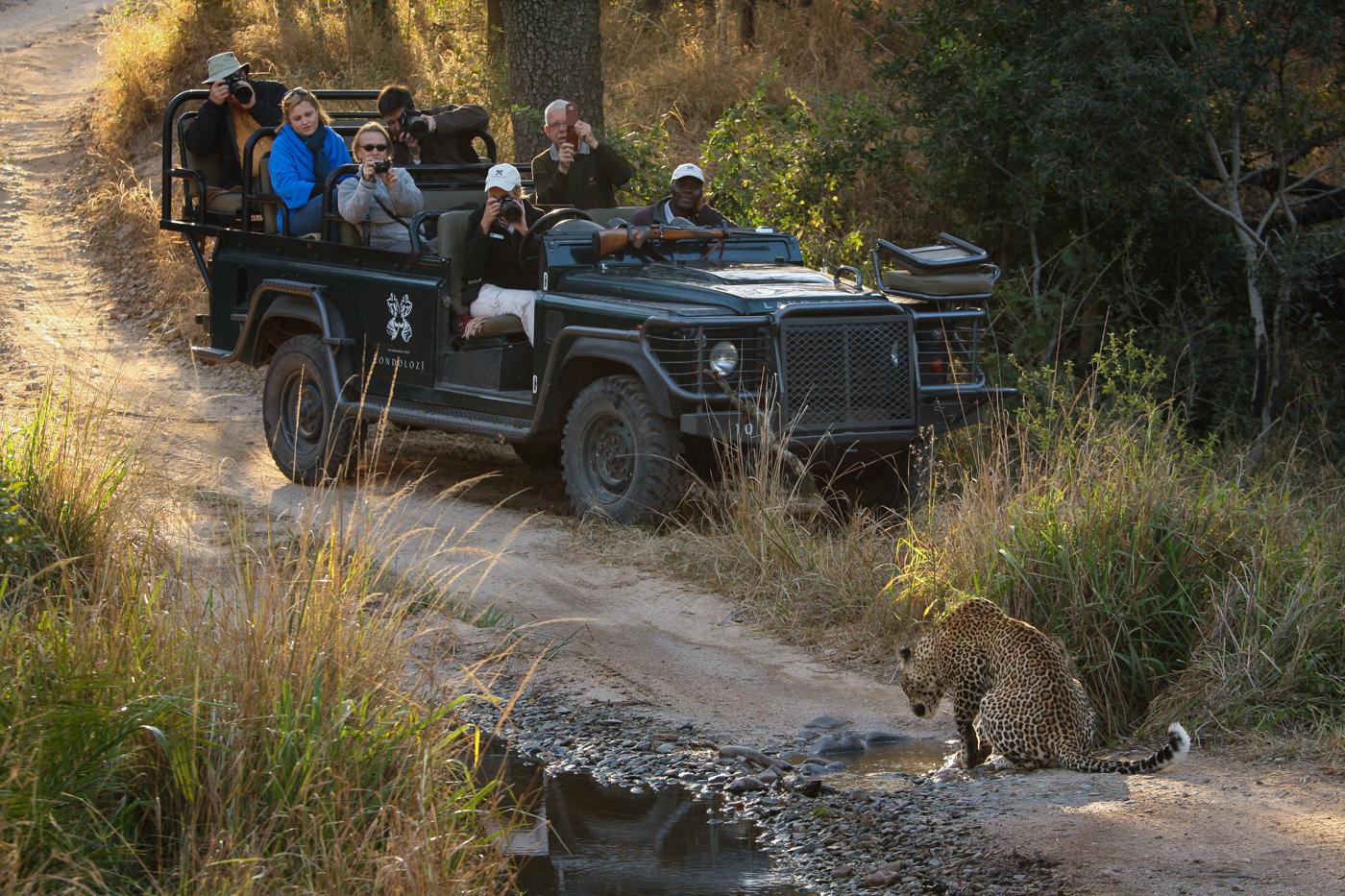 leopard-vehicle-2