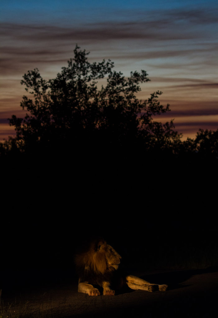 Manjingi air sunset-2184