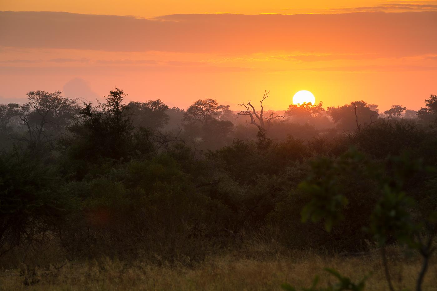 sunrise, AA