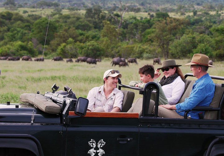 game drive, sean cresswell, elsa young