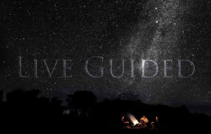 Live Guided Londolozi