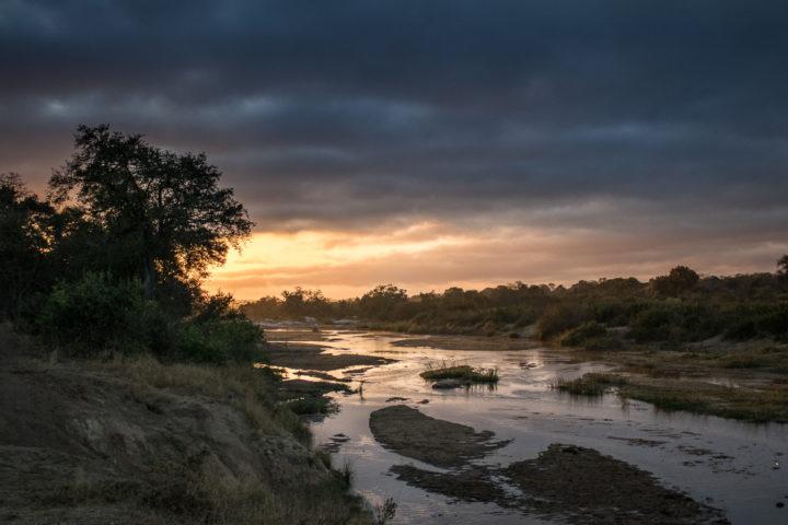 Londolozi, KNP, Fin Lawlor, sunrise, river