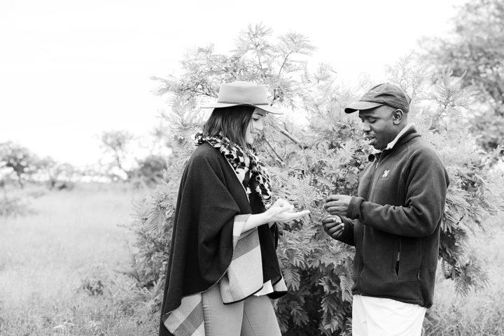 Londolozi Game Reserve Tracker