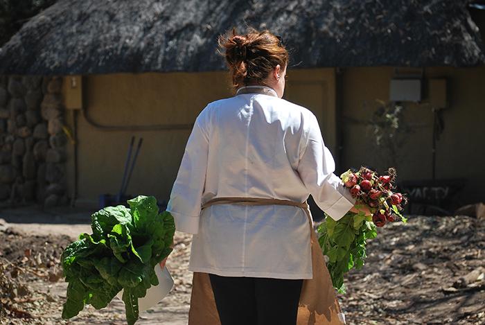 Anna-at-Londolozi