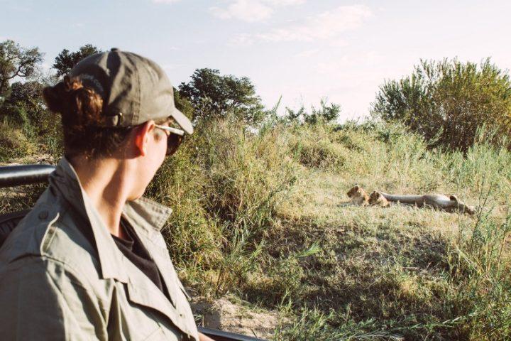 Tyler Wright watching lions Londolozi - Corey Wilson