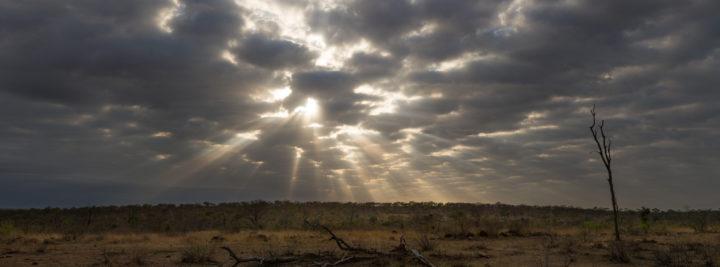 clouds, panoramic, grasslands, JT