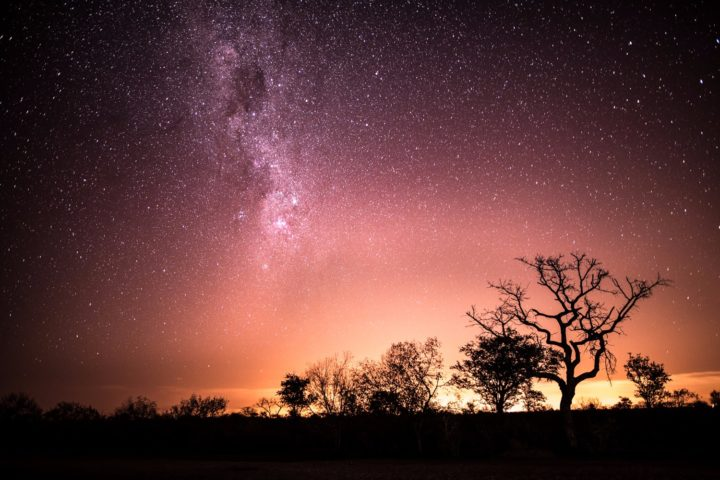 Starry night at Londolozi Game Reserve