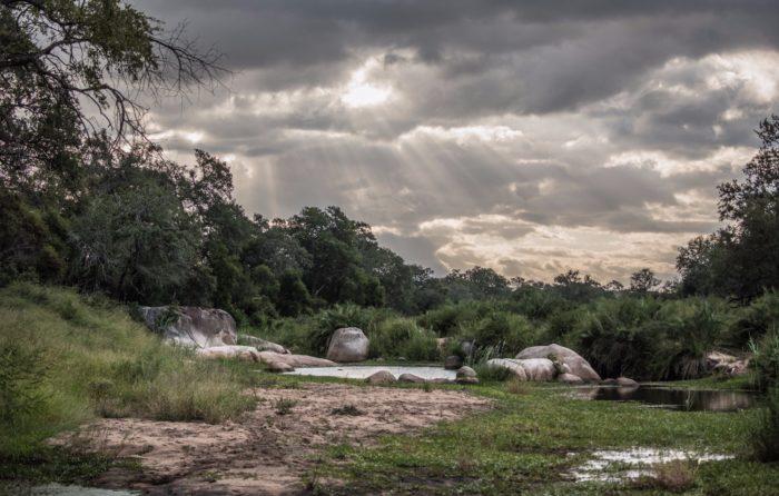 Sunset Crossing - Londolozi Game Reserve