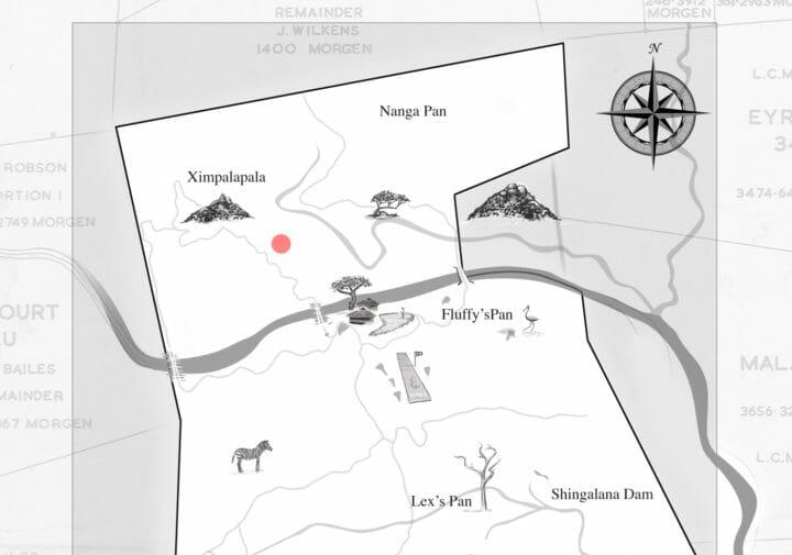 Map Lioness
