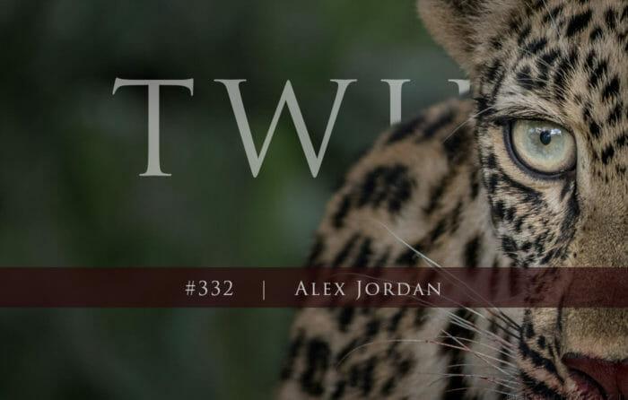 Twip 332