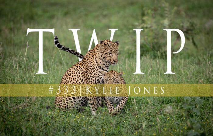Twip 333