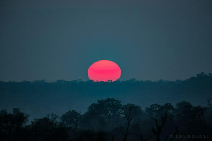 Sunrise 2 Jt