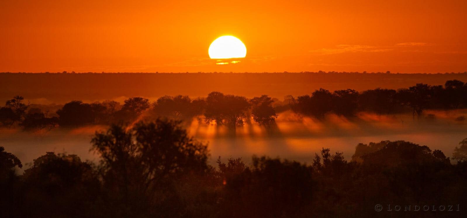 Sunrise Jt1