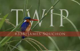 Twip2