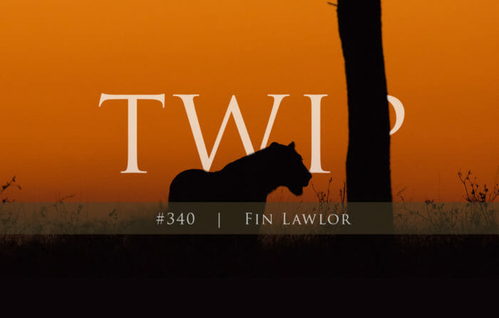 Twip Fin