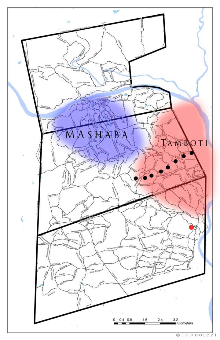 Tamboti Mashaba 2