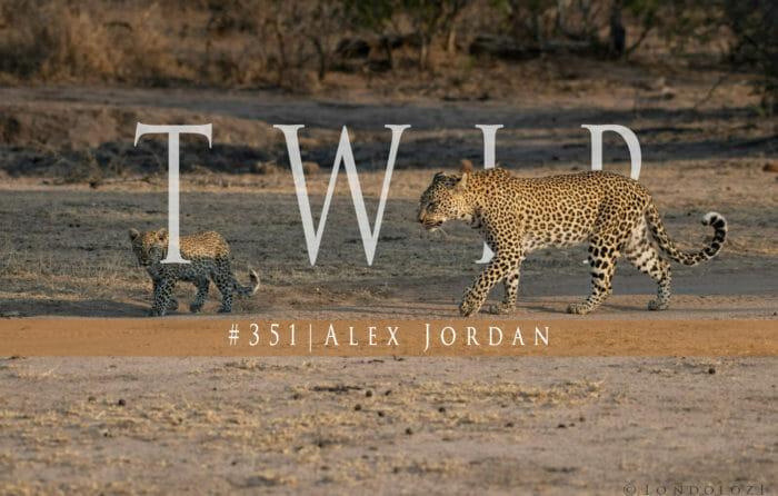 Twip351