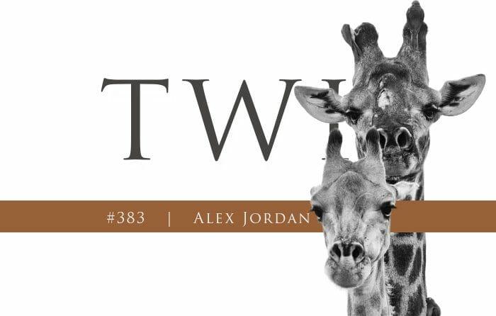 Aj Twip 383