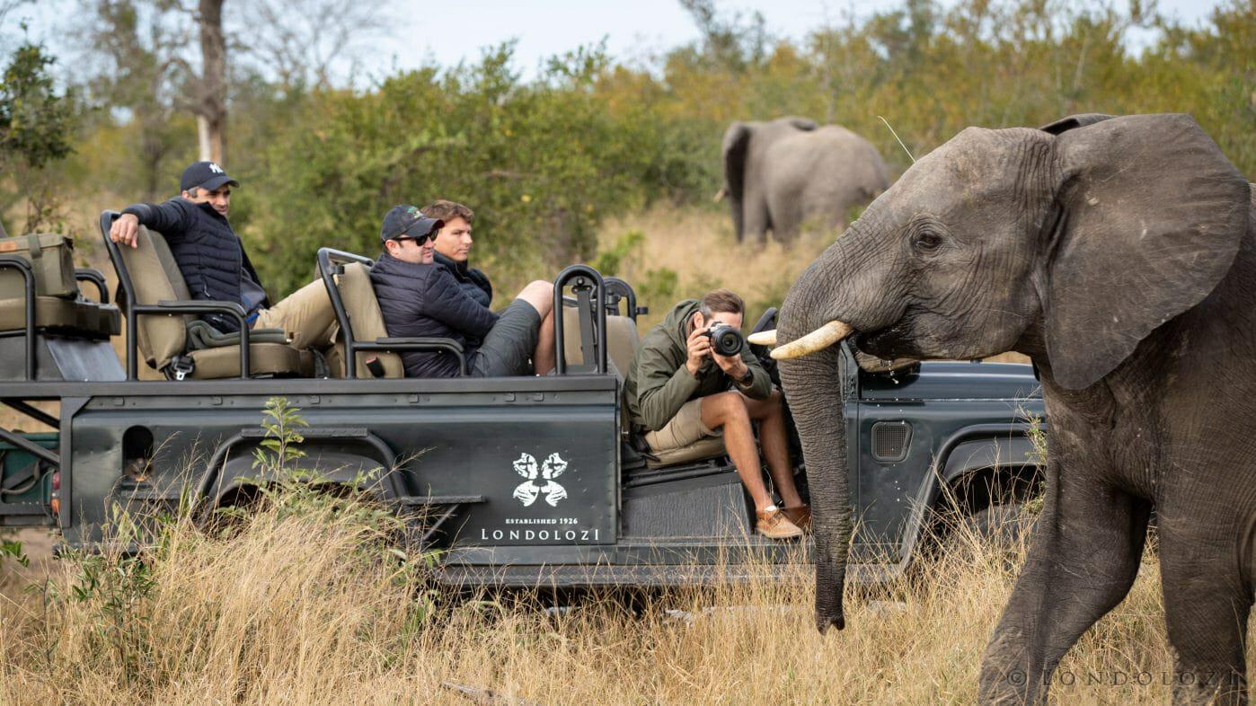 Elephant Pete Land Rover