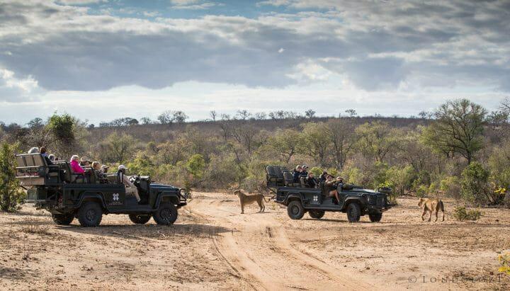 Ntsevu Lions Dean Melvin Land Rover