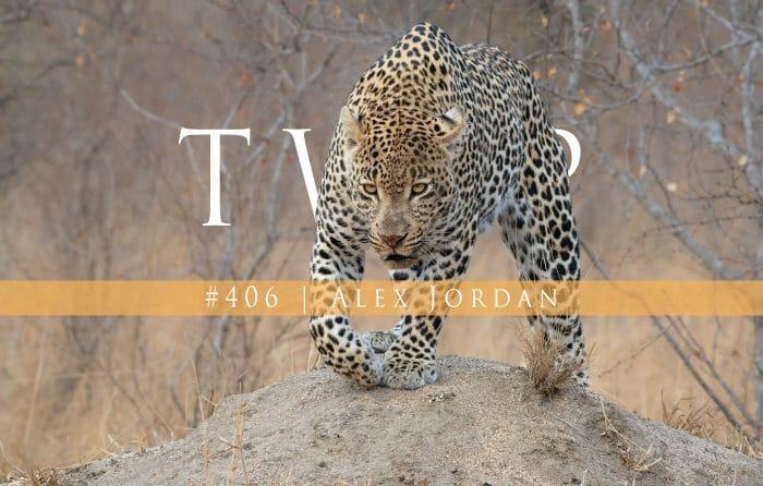 Twip 406