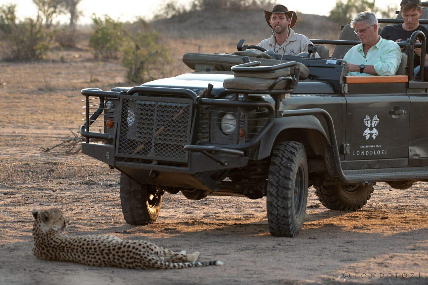 Pete Cheetah