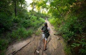 Rangers Jess Shillaw Drainage Walk Track