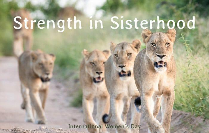 Womens Day 2