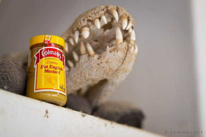 Mustard Rangers 3