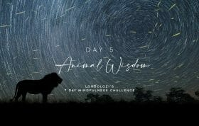 Day5 Cover Image