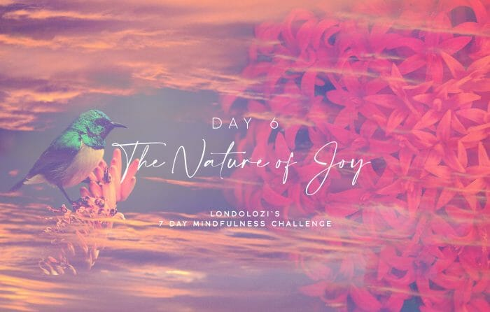 Day6 Cover Image