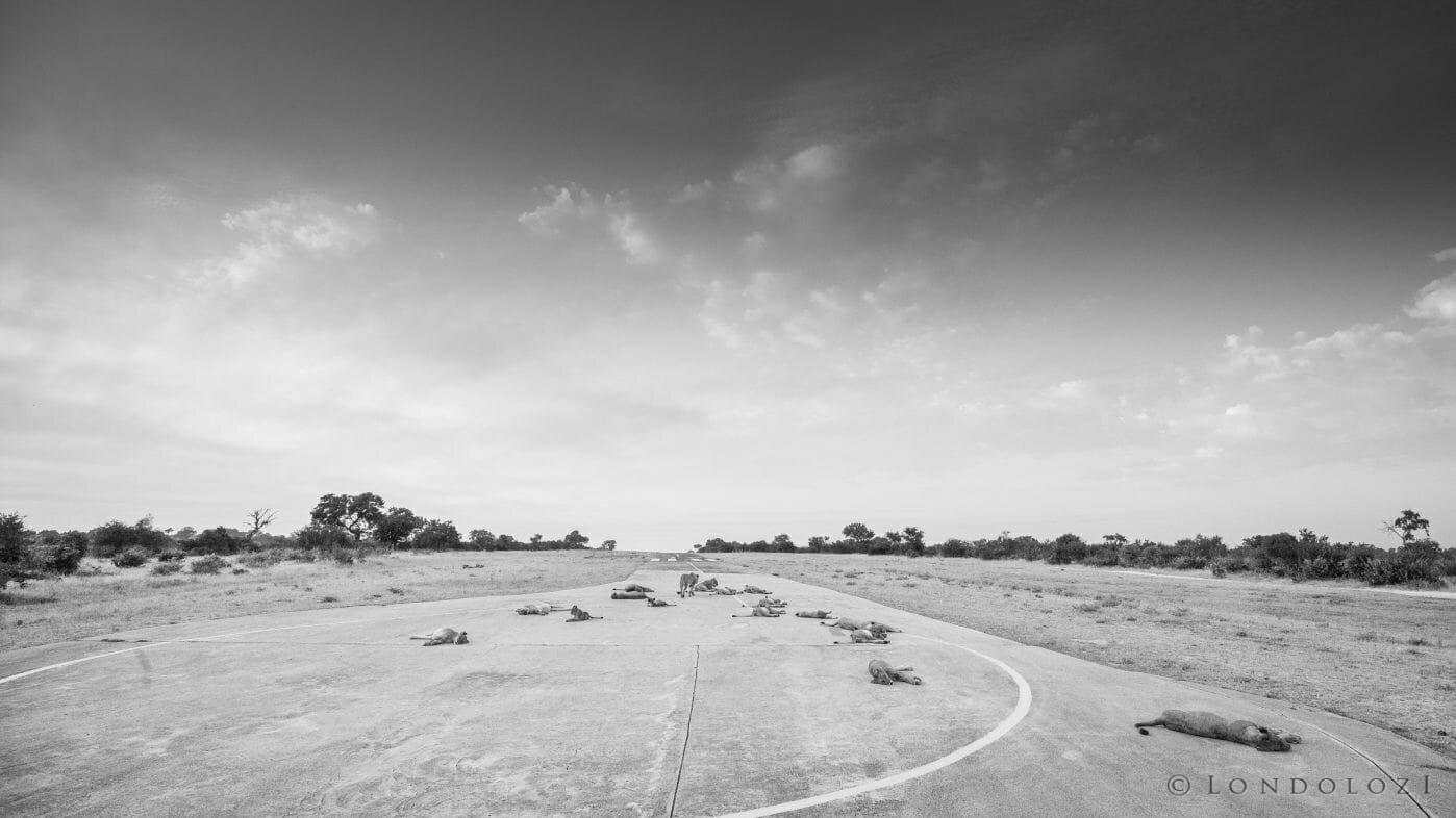 Ntsevu Lions Airstrip