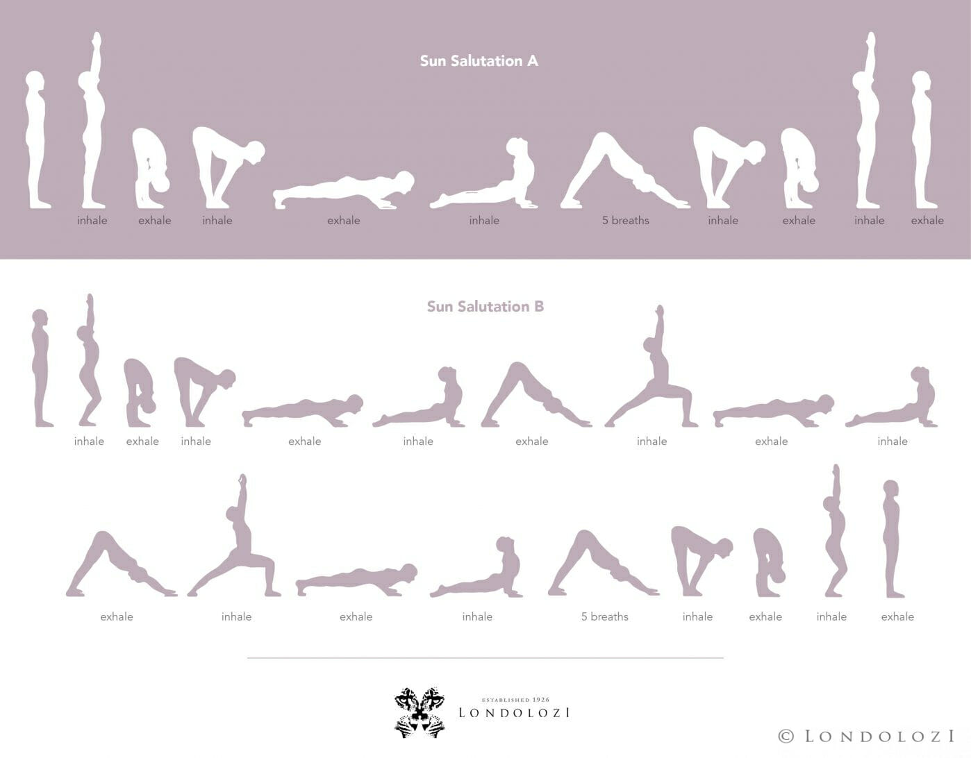 Sun Salutations Step By Step
