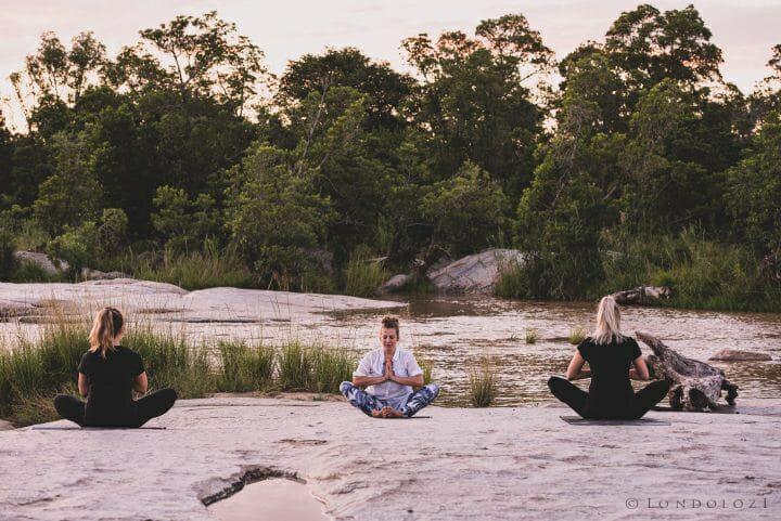 Londolozi Yoga Wild A Ritchie 1734