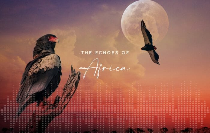 Echoes Of Africa Blog Banner